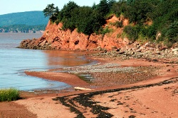 Johnson's Mills Shore, New Brunswick (photo by Margot Elliot)